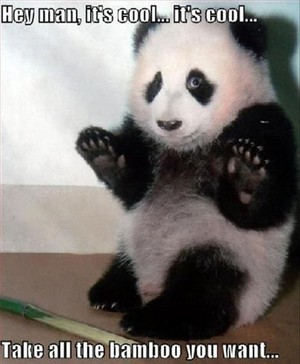 Take the bamboo and don`t touch me ❤ ❥