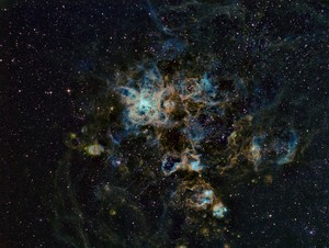 tarentule Nebula