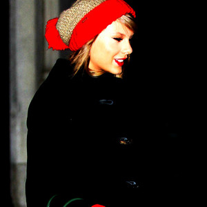 Taylor 팬 Art