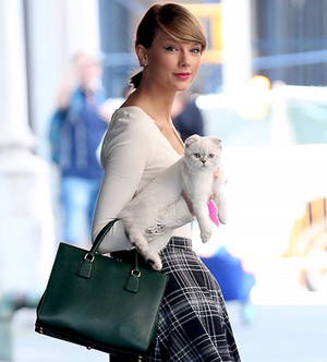 Taylor schnell, swift and one of her Katzen Olivia