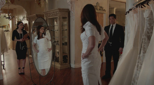 The Mentalist wallpaper called The Mentalist- 7.13 White Orchids- Series Finale