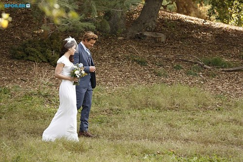 The Mentalist wallpaper titled The Mentalist- Episode 7.13 White Orchids- Series Finale