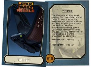 Tibidee Trading Card