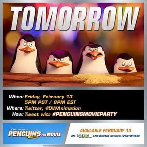 Tomorrow available february 13.