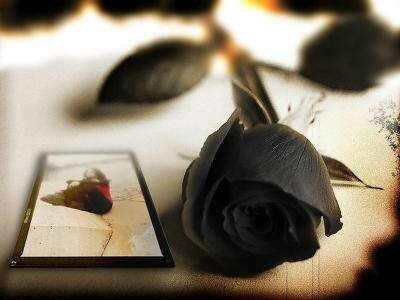 lumpkinpie_19 wallpaper called a black rose woth a love letter next to it
