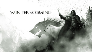 jon snow winter is coming