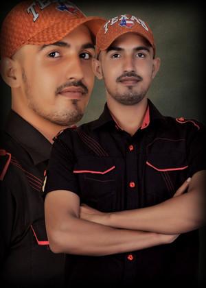 majid editor