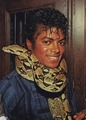 michael jackson snake around his neck - michael-jackson photo