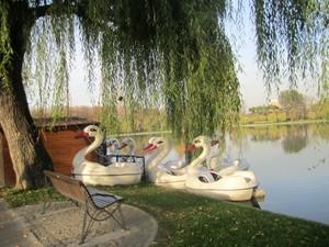 parcul Alexandru Ioan Cuza lacul Titan IOR Bucuresti Bucharest Romania