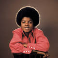 young michael jackson - michael-jackson photo