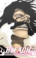 ºº Bleach ºº - bleach-anime photo