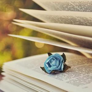 ★ boeken ★