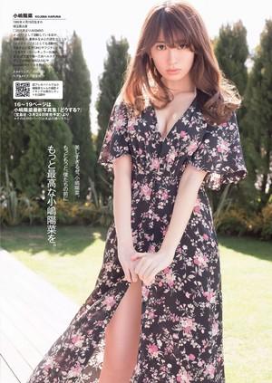 「Kojima Haruna」 「BCS」(2015 No.13)