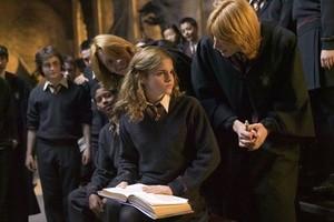 -hermione-granger-
