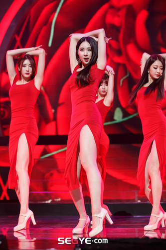 Nine Muses Обои possibly with a bearskin and a коктейль dress titled 150305 Nine Muses - Erin Coming of Age (M! Countdown Special Stage)