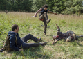 """4x13 """"Forget"""" - the-walking-dead photo"""