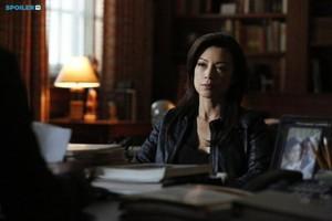 Agents of S.H.I.E.L.D. - Episode 2.13 - One Of Us - Promo Pics