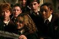 Angiecrow454 - hermione-granger photo
