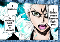 BEST QUOTE IN BLEACH Toshiro Hitsuguya