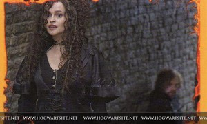 Bellatrix-HP-DH-part-2-harry-potter