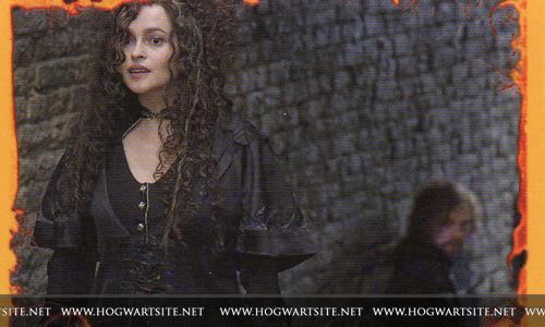 Bellatrix-HP-DH-part-2-harry-potter