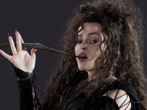 Bellatrix-HP