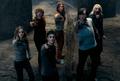 Da_department - hermione-granger photo