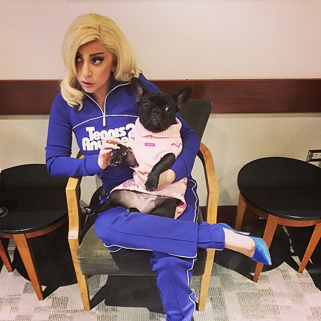 Gaga and Asia