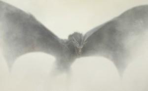 GoT Poster of Drogon