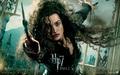 HELENA BONHAM CARTER ♥ - harry-potter wallpaper