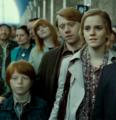Hermione 344 - hermione-granger photo