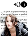 Katniss Everdeen | The Hunger Games - Chapter One