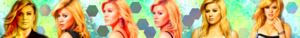Kelly Clarkson Banner