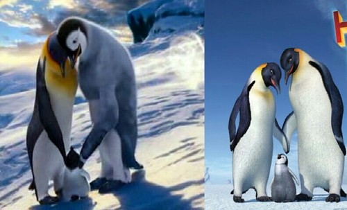 Happy Feet Wallpaper With An Emperor Penguin Entitled Love Difference