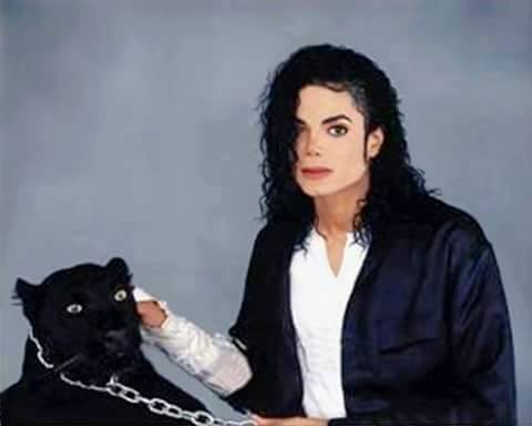 Michael Jackson Hintergrund probably with a panther titled MICHAEL touching panther
