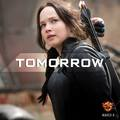 Mockingjay Part 1 on Blu-Ray  - the-hunger-games photo