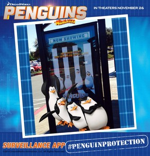 Penguin Picture Show