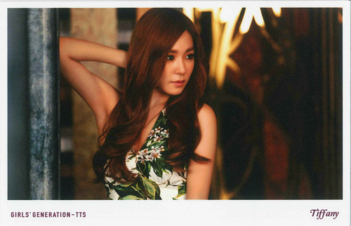 Tiffany Hwang wallpaper with a portrait titled TaeTiSeo Tiffany- Holler Polaroids