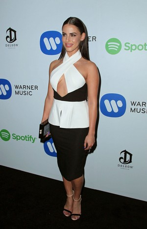 Warner Музыка Group Grammy 2015 After Party