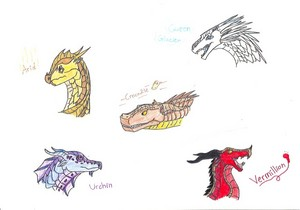 Wings of Fire Characters 2