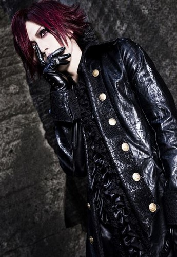 DIAURA দেওয়ালপত্র possibly with a well dressed person, a hip boot, and a box কোট titled Yo-ka