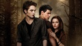 twilight-series -                New Moon wallpaper