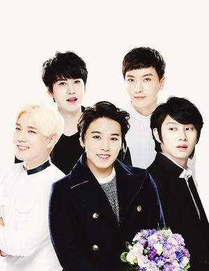 ♣ Super Junior ♣