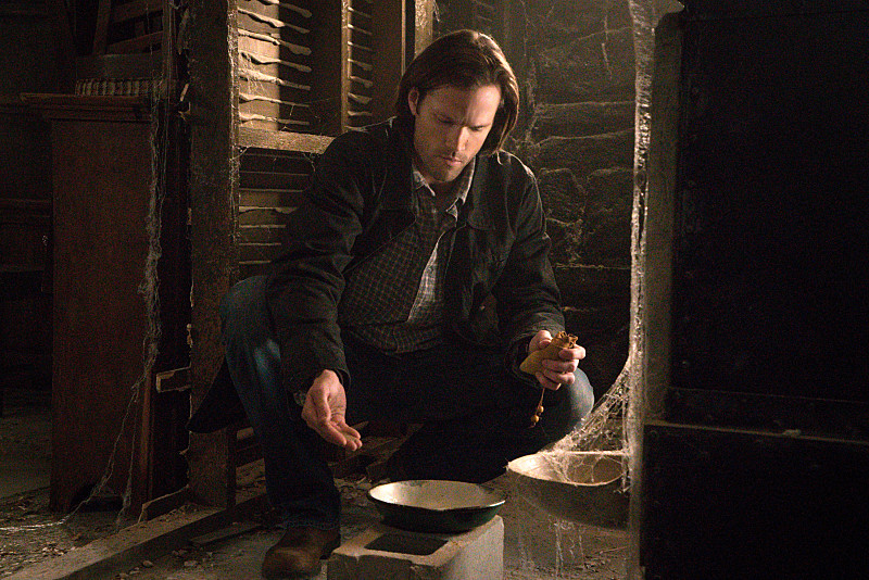 10 x19 The Werther Project
