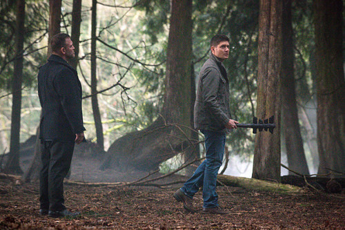 The Winchesters پیپر وال containing a mulch کے, mulch entitled 10 x19 The Werther Project
