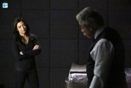 Agents of S.H.I.E.L.D. wallpaper with a business suit called Agents of S.H.I.E.L.D. - Episode 2.16 - Afterlife - Promo Pics