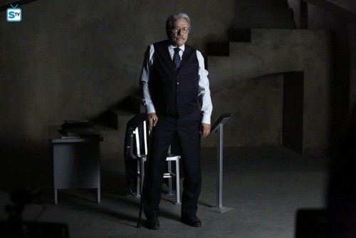 Agents of S.H.I.E.L.D. wallpaper with a business suit, a suit, and a well dressed person titled Agents of S.H.I.E.L.D. - Episode 2.16 - Afterlife - Promo Pics