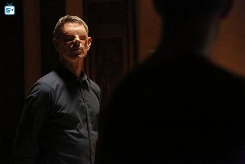 Agents of S.H.I.E.L.D. wallpaper with a business suit called Agents of S.H.I.E.L.D. - Episode 2.16 - Afterlife - Promo Pics
