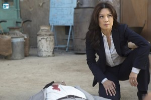 Agents of S.H.I.E.L.D. - Episode 2.17 - Melinda - Promo Pics