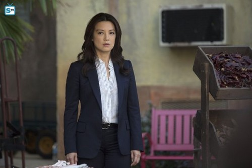 Agents of S.H.I.E.L.D. wallpaper containing a business suit, a well dressed person, and a suit entitled Agents of S.H.I.E.L.D. - Episode 2.17 - Melinda - Promo Pics